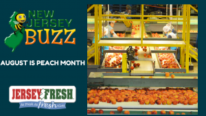 Jersey Fresh Peaches are Here