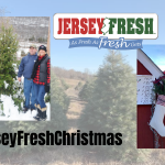 NJ Dept Agriculture Officially kicked off Christmas Tree Season!